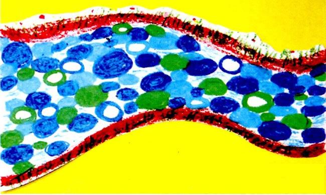 幼儿园中班画画教案设计:奇异的小路